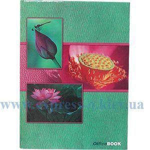 Изображение Книга учета 96 листов клетка обложка твердая